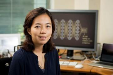 李飞飞团队正在研制家用AI体系可监测白叟新冠症状