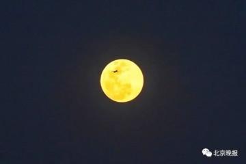 本年最大超级月亮行将上台昂首可见最佳欣赏时刻